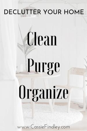 Declutter Clean Purge Organize